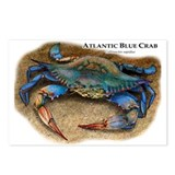 Atlantic Blue Crab Postcards (Package of 8)