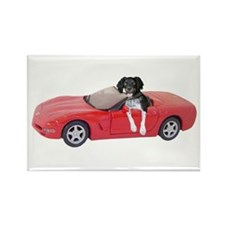 Dog Red Car Rectangle Magnet