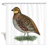 Bobwhite Quail Hen Shower Curtain