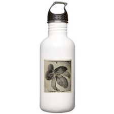 I Love the Herb Basil Water Bottle