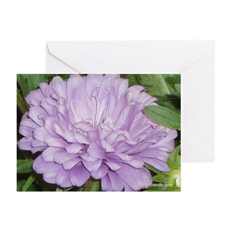Lavender Flower Greeting Cards (Pk of 10)