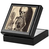Skeletal Child Alcove Keepsake Box
