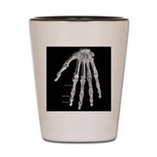 Skeleton hand Shot Glass
