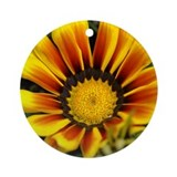 "Gazania ""Sunburst"" Ornament (Round)"