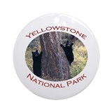 Yellowstone National Park...Black Bear Cubs Orname