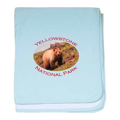 Yellowstone National Park...Grizzly Bear baby blan
