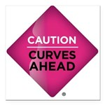 "Caution Curves Ahead Car Magnet 3"" x 3"""