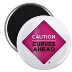Stick To It Caution Curves Ahead Magnets