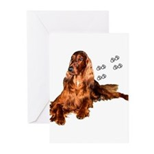 Sunny 02 Greeting Cards (Pk of 10)