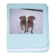 Snow Weims baby blanket