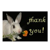 THANK YOU Bunny Rabbit w/ flower postcards - 8pack