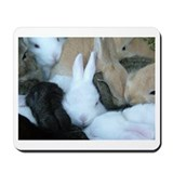 Sea of Bunnies Baby Bunny Rabbit purple Mousepad