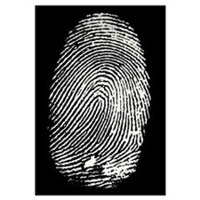 Enlarged fingerprint