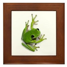 Tree Frog -  Framed Tile
