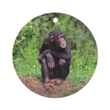 Chimp Ornament (Round)
