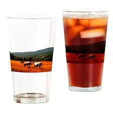 Appaloosas Drinking Glass