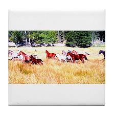 Running Appaloosa Herd Tile Coaster