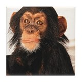 Monkey! Tile Coaster