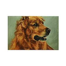 Golden Retriever Dog Rectangle Magnet
