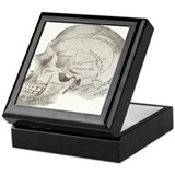 side view skull Keepsake Box