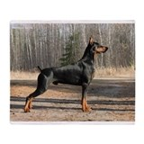 Doberman chat Throw Blanket