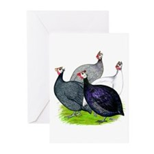 Four Guineafowl Greeting Cards (Pk of 10)