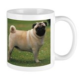 your so pugly  Tasse