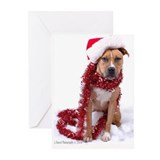 Pit bulls Greeting Cards (Pk of 10)