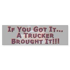 If You Got It Bumper Sticker 2