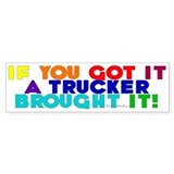 Rainbow Colors Bumper Bumper Sticker