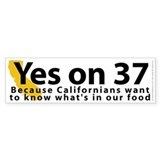 Yes on 37 - Bumper Sticker