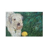 &amp;quot;Wheaten&amp;quot; Rectangle Magnet
