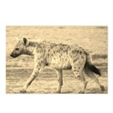sepia spotted hyena morning kenya collection Postc