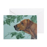 """Rhodesian Ridgeback"" Greeting Cards (Pk of 20)"