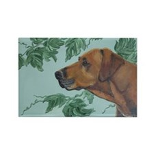 """Rhodesian Ridgeback"" Rectangle Magnet"