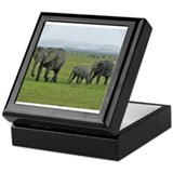 mara elephant family kenya collection Keepsake Box