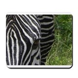 nakuru zebra closeup kenya collection Mousepad