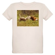 mara lion napping kenya collection T-Shirt