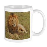 male lion kenya collection Mug