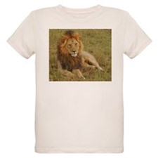 male lion kenya collection T-Shirt
