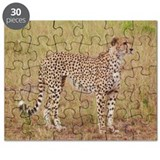 cheetah brother kenya collection Puzzle