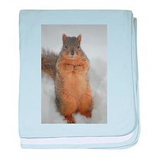 Squirrel Love baby blanket