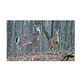 Doe with fawn Wall Decal