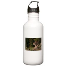 Cougar 1 Water Bottle