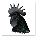 "Ayam Ceymani Rooster Square Car Magnet 3"" x 3"
