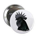 "Ayam Ceymani Rooster 2.25"" Button"