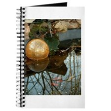 Fish and ball journal