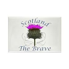 Scotland The Brave Thistle Rectangle Magnet