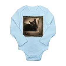 Box Cat, sepia 1 Long Sleeve Infant Bodysuit