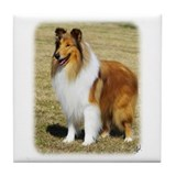 Collie Rough AF036D-028 Tile Coaster